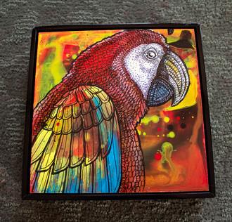 Majestic Macaw