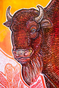 Bison at Sunrise