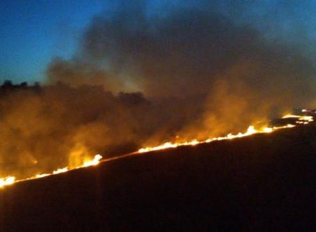 Ya son 90.000 las hectáreas incendiadas en Entre Ríos, y se declaró Emergencia Ambiental