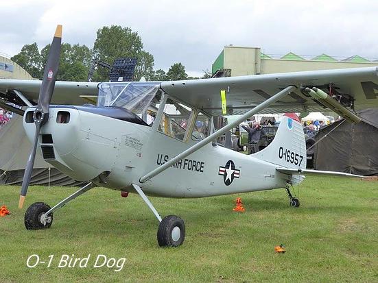 01 Birddog.png