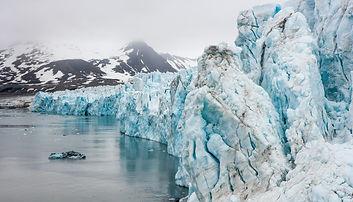 Svalbard - glaciers. Arcic Desgin. Four Whales. Eco-friendly Design Fashion