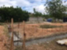 Building 3.jpg