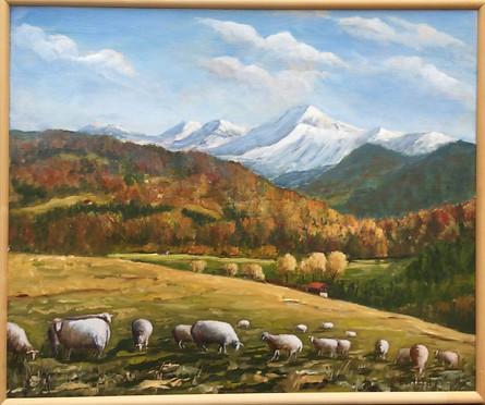 Les moutons sous la Dent de Lys depuis Maracon