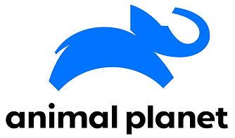 animal 1.jpg