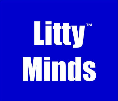 Litty Minds Box.jpg