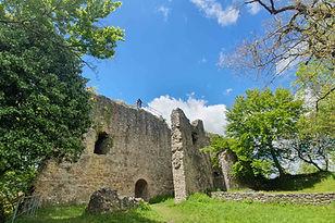 Ruine Homburg_1.jpg