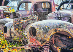 Out to Pasture/SOLD