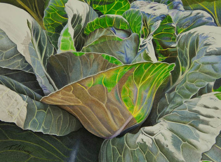 """""""Cabbage Soup"""" done....."""