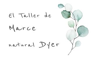 el taller de Marce Dyer apaisado.png