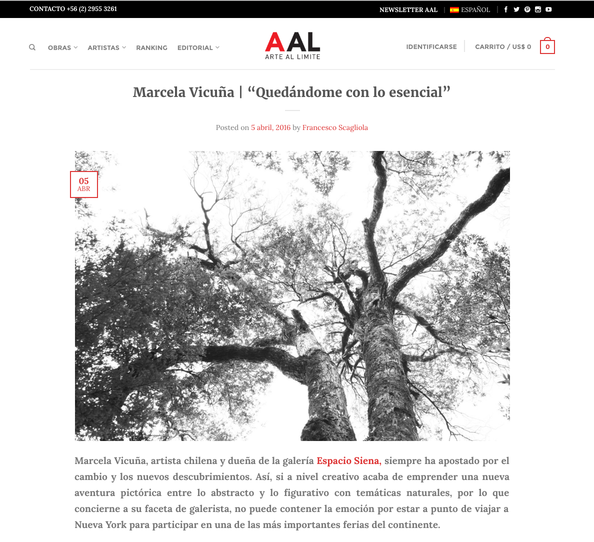 Entrevista Arte Al Limite