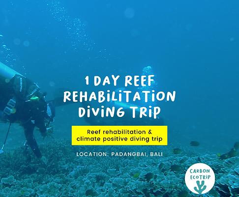 1D Reef Rehabilitation Diving Trip [E-Ticket]