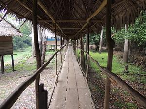 Amazon Yoga Retreat