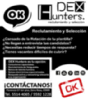 SERVICIOS DEX HUNTERS