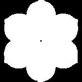 saga-japan-flag-symbol-of-a-flower.png