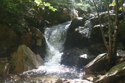Gorge Trail 2