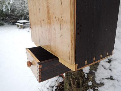 hanging birch 6 web.jpg