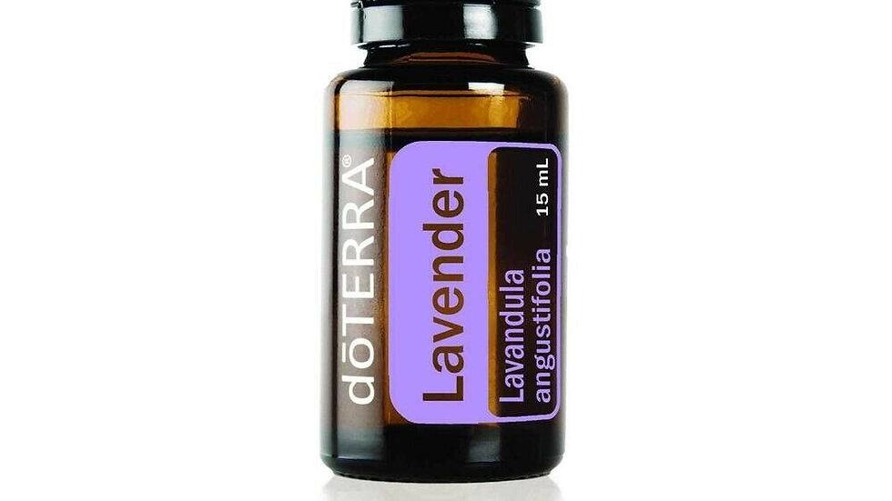 doTERRA Lavender Lavandula angustifolia 15mL