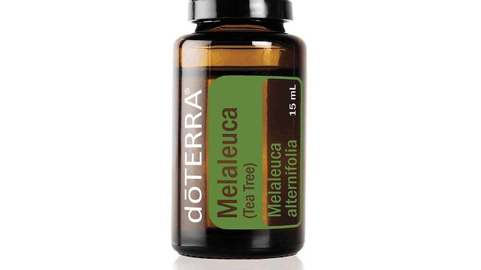 doTERRA Tea Tree Melaleuca alternifolia 15mL