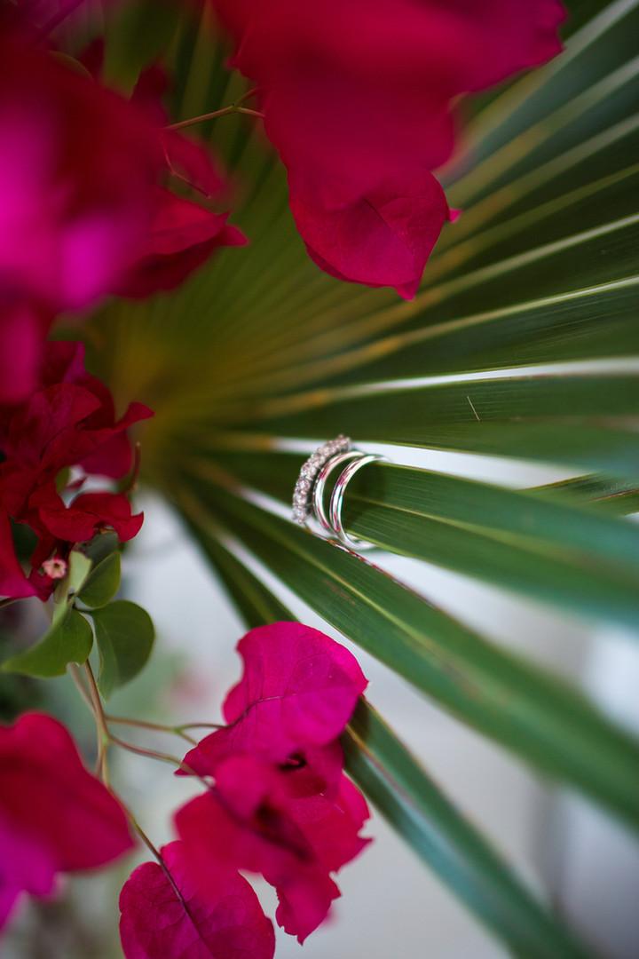 dede-brown-photography-bea+jp-wedding-el