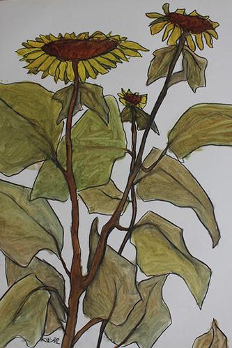 zonnebloemen2.jpg