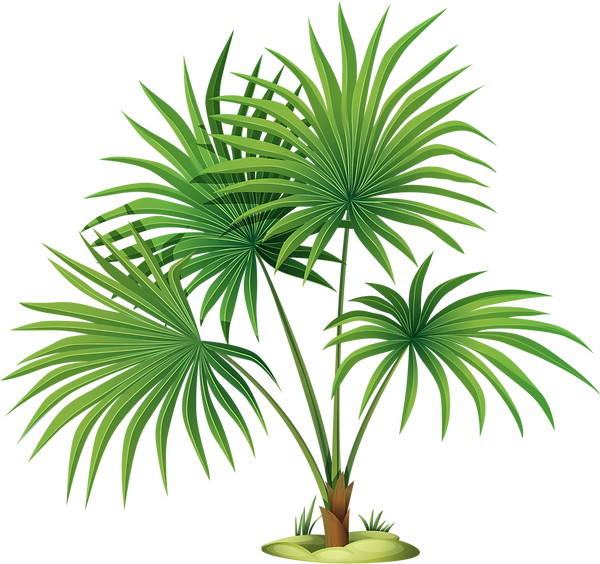 leafs and palms (6).png
