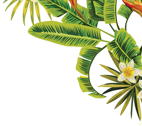 leafs and palms (1).png