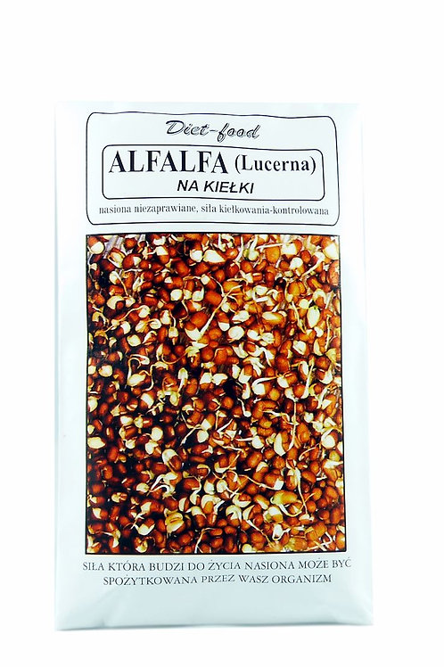 Alfalfa lucerna na kiełki 80g DIETFOOD