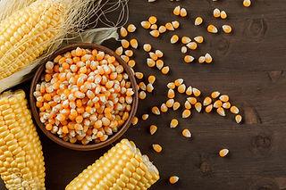yellow-corn.jpg