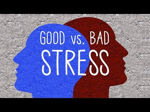 Good stress, bad stress. How to embrace the one and manage the other.