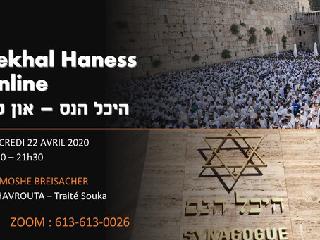 22/04/2020 - MyHavrouta - Guemara Souka (35b) - Rav Breisacher