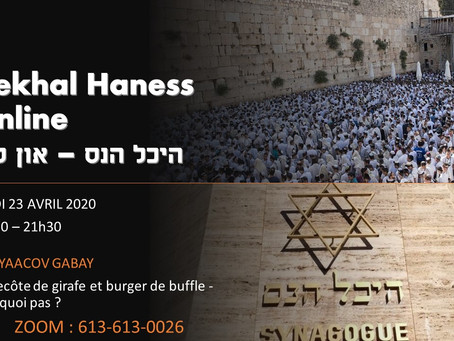 23/04/2020 - Entrecôte de girafe et burger de buffle - pourquoi pas ? - Rav Gabay