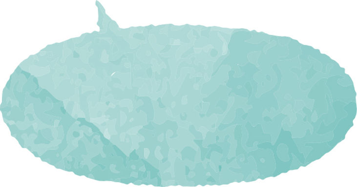 青緑の吹き出し2.jpg
