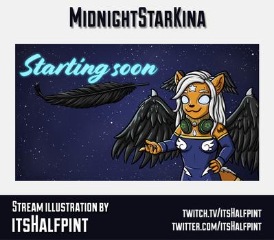 MidnightStarKina-GraphicsCard.png