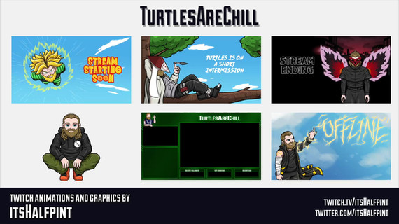 TurtlesAreChill- Anime Animations Twitch Screens Starting BRB Ending Offline Illustration Character