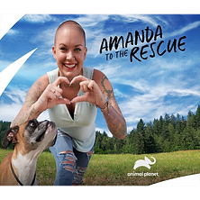 Amanda to the Rescue.png