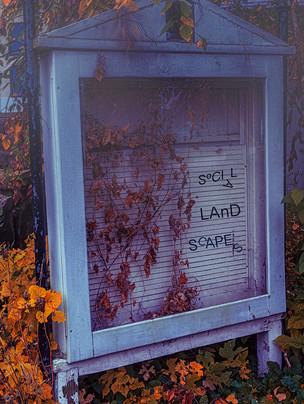 Social landscpaes cover image.jpg