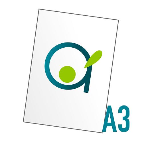 Affiche A3 (297x420 mm)