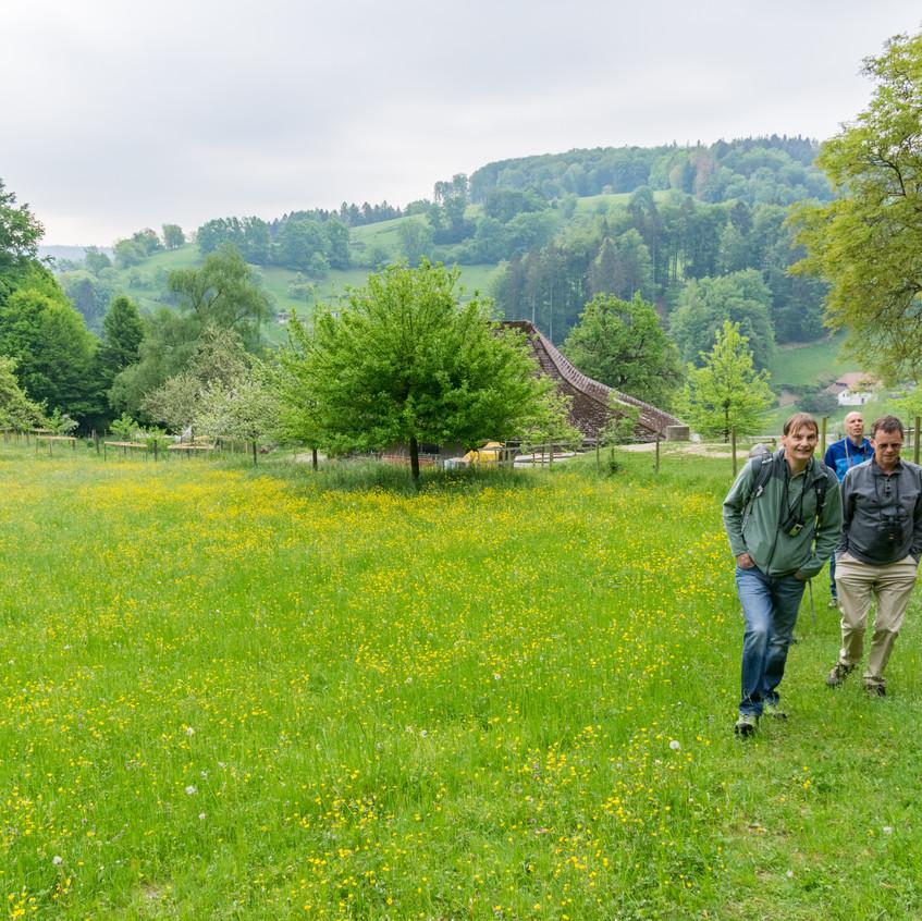Unterwegs am Manzenberg