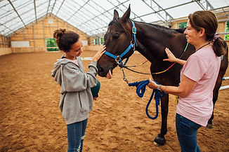 People petting a horse