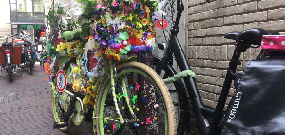 Amsterdam_bike_flowers.jpg