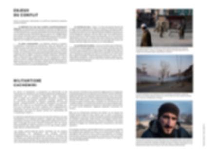 Panneaux Cachemiris 2.jpg