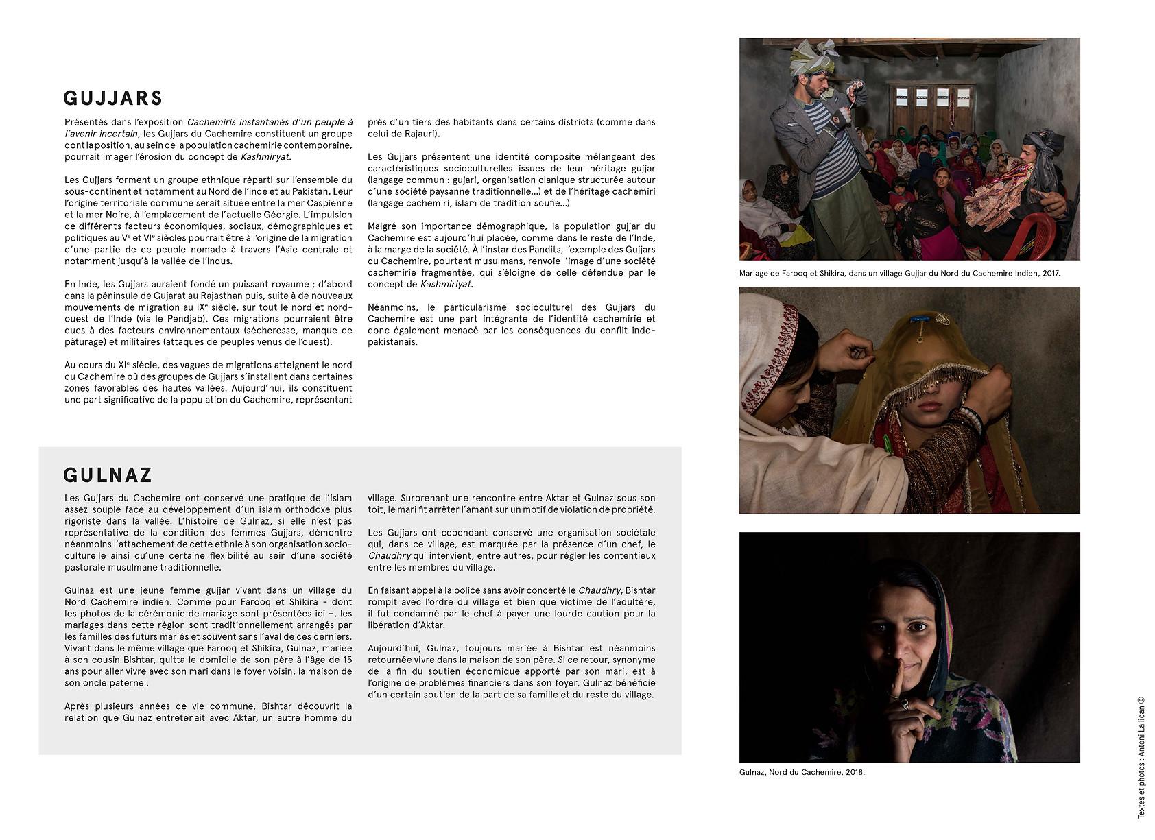 Panneaux Cachemiris 3.jpg