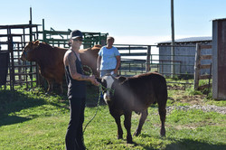 Farm Days 2017