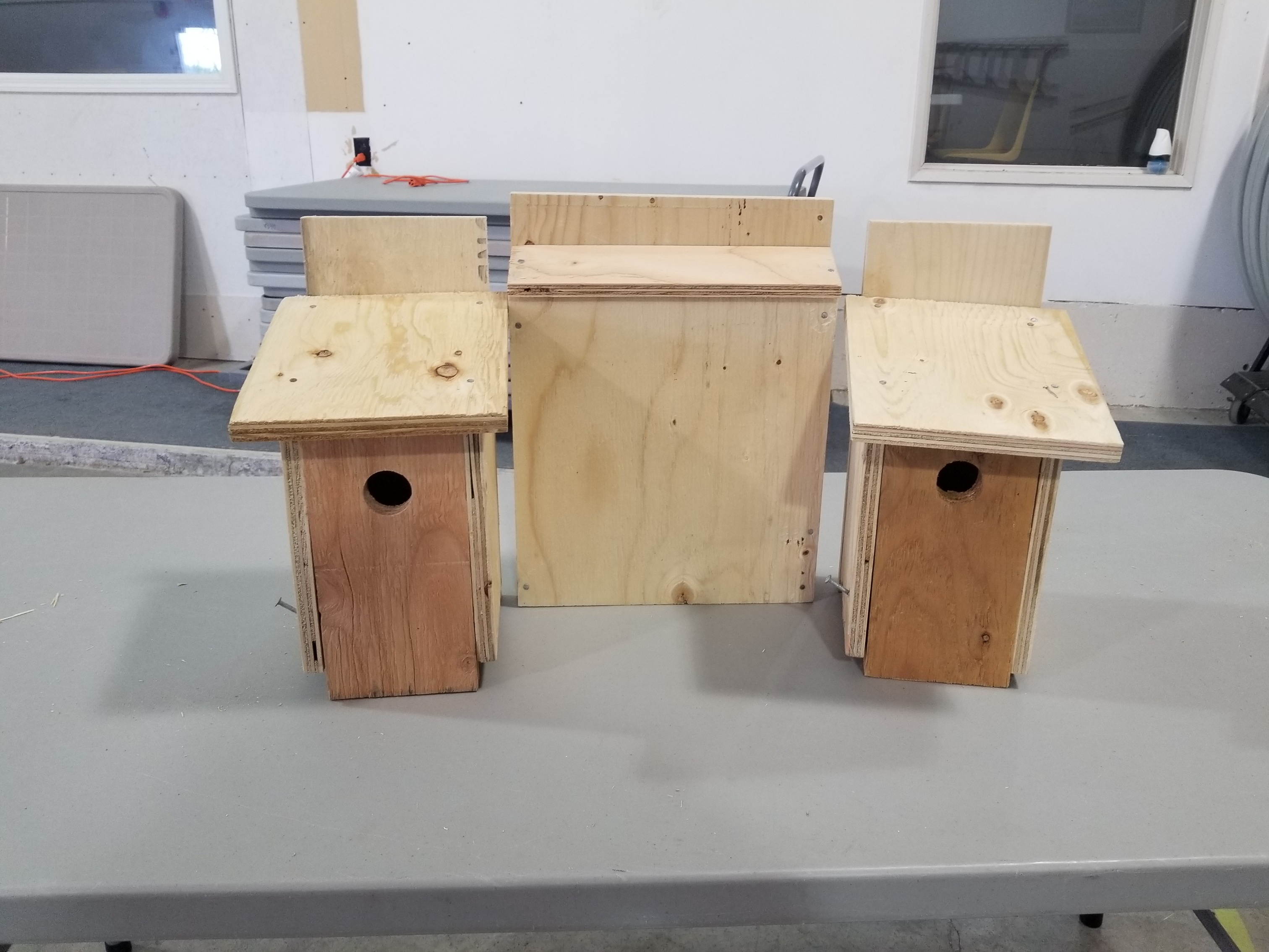 Bird House Build 2018
