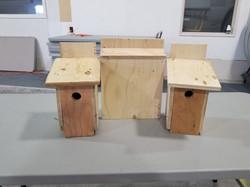 Bird House Build 2018