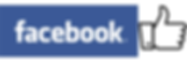 icon facebook.png
