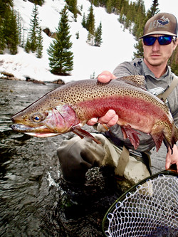 Fly Fishing Taylor River