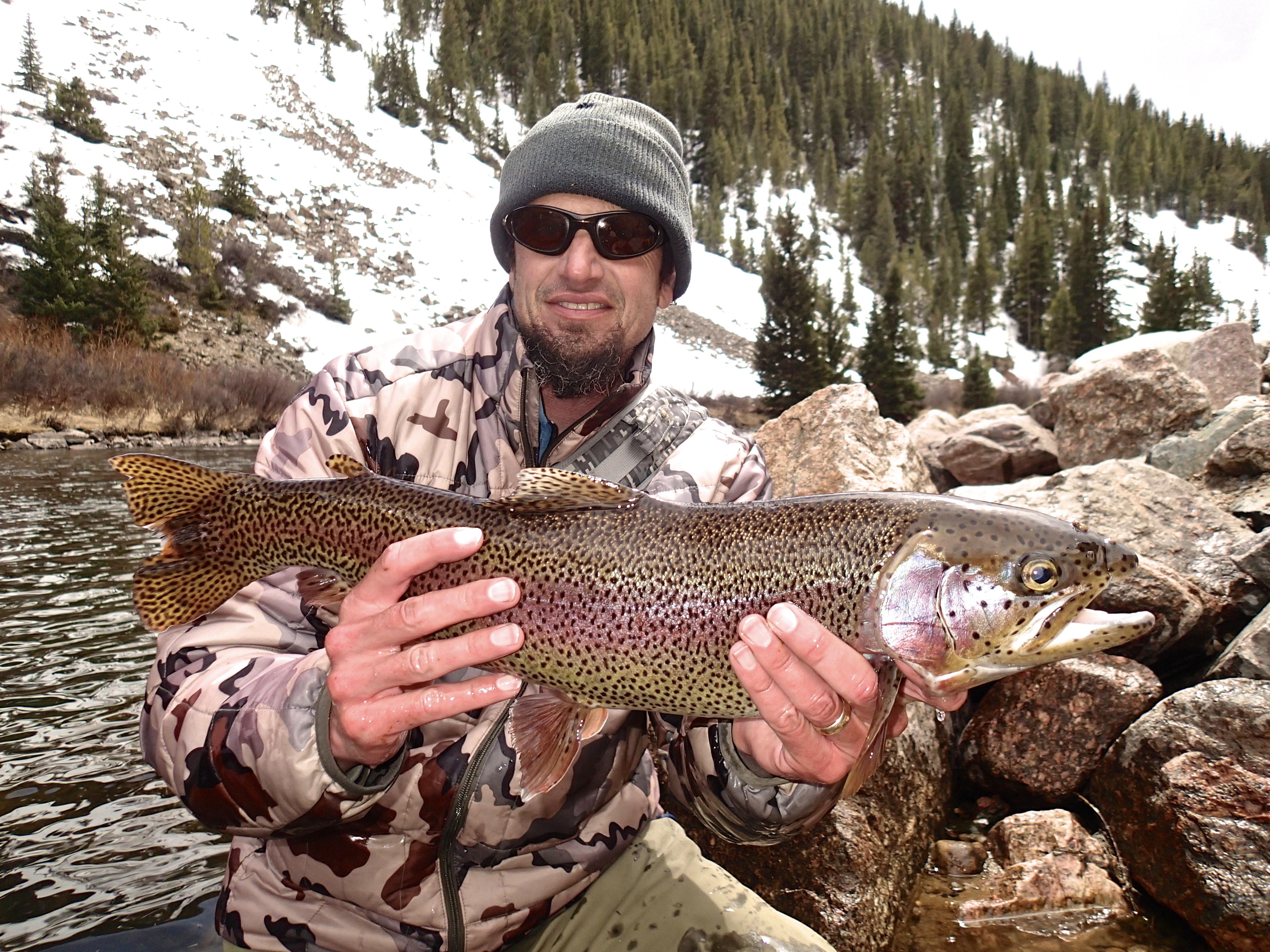 C&R Taylor River Rainbow