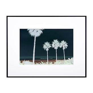 Cosmic palms - Elsa Marj