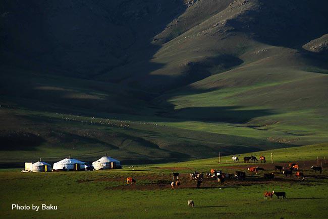 mongol ail 1.jpg